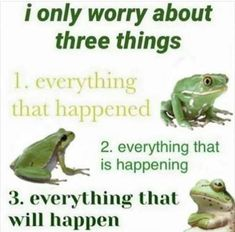 Clever Memes That Are Too Freaking Funny Stupid Memes, Dankest Memes, Funny Memes, Cute Frogs, Quality Memes, Oui Oui, Wholesome Memes, Reaction Pictures, Alter