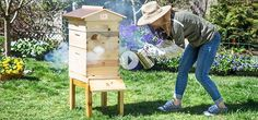 Honey Bee City starter beekeeper kit