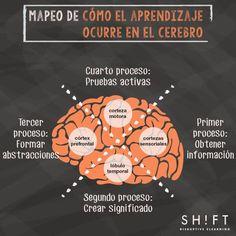 ¿Cómo aprende nuestro cerebro? Cuatro procesos y partes del cerebro.     Referencias:    Cómo Aprende nuestro Cerebro en Entornos eLearning | Artículo. (2017). Blog de Gesvin. Retrieved 24 May 2017, from https://gesvin.wordpress.com/2016/03/19/como-aprende-nuestro-cerebro-en-entornos-elearning-articulo/    Alarcon, A. (2017). Cómo aprende nuestro cerebro: Una explicación para los profesionales eLearning. Info.shiftelearning.com.