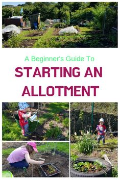 A Complete Guide To Starting An Allotment – Growing Healthy Kids – Gardening for beginners and gardening ideas tips kids Vegetable Garden For Beginners, Home Vegetable Garden, Gardening For Beginners, Magic Garden, Diy Garden, Garden Ideas, Garden Projects, Garden Cart, Garden Office