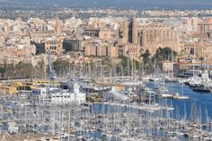 Palma | Yachtcharter Mittelmeer - PCO Yachting #mallorca #palma #segeln