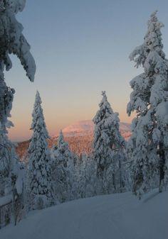 Pyha-Luosto Lappland...