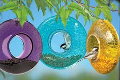 Glittering Glass Feeder Adds Color to Your Landscape    Colorful Moon Birdfeeder brightens up your landscape  Birds can feed from the rim or hop inside during bad weather  Easy to fill; holds 2 cups of seed  Your backyard birds will love this unique one-stop feeder. In fair weather, they can perch on the rim to dine. When it's wet and windy, they can hop inside to eat. The extra thick crackle glass sparkles when it catches the light. Drainage holes keep seed dry.