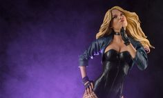 Share this with your friends and receive a $15 promo code. Click here to write your message. DC Comics Black Canary Premium Format™ Figure