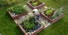 i miss my gardens at my old house downtown.  I definitely need little raised vegetable beds like these in the backyard. #backyard #garden