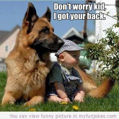 Wicked Training Your German Shepherd Dog Ideas. Mind Blowing Training Your German Shepherd Dog Ideas. Funny Animal Jokes, Funny Animals, Cute Animals, Funny Jokes, Dogs And Kids, I Love Dogs, Cute Puppies, Cute Dogs, Awesome Dogs