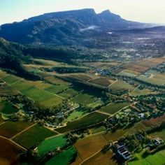 Vote for Constantia Wine Route in the Klink Awards