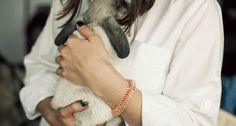 Neon Fishtail Bracelet by Lizzie Fortunato Jewels for Of a Kind // $100