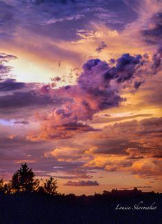 My New Mexico sky