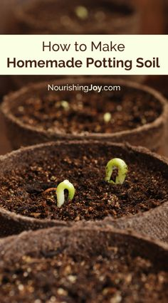 Container Gardening For Beginners Making homemade potting soil requires only 3 ingredients and provides a place for your plants to thrive! - Homemade potting soil requires only 3 ingredients and provides a place for your plants to thrive! Flowers Garden, Succulents Garden, Planting Flowers, Indoor Succulents, Succulent Landscaping, Growing Flowers, Garden Soil, Lawn And Garden, Balcony Gardening