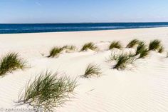 Sylt: The 10 highlights of my favorite island North Sea, Baltic Sea, Germany Travel, Road Trip, Around The Worlds, Waves, Island, In This Moment, Vacation