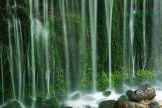 白糸の滝 Shiraito no taki