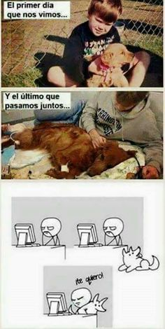 52 ideas for memes sad de perros Funny Dogs, Funny Animals, Cute Animals, Funny Memes, I Love Dogs, Cute Dogs, Relationship Memes, Dog Friends, Animals Beautiful