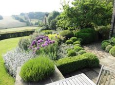 Lavender stachys Alliums with clipped box Amazing Gardens, Beautiful Gardens, Landscape Architecture, Landscape Design, Rectangular Pool, Vegetable Garden Design, Formal Gardens, Garden Boxes, Outdoor Pool