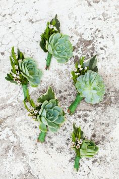 The Design Series; Succulent Inspired Ceremonies #weddings #succulents #weddingdecor