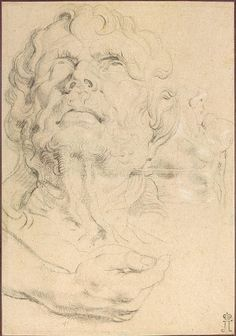 Sheet of Studies: Head of a Man Looking Up, Hand , and Lower Part of a Head in Profile - Pieter Paul Rubens -  Flanders, 1618/1619