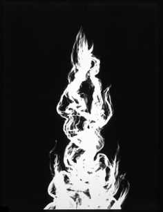 Adam Fuss From the series My Ghost 1999 Platinum print photogram
