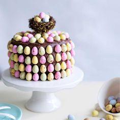 En riktigt härlig chokladig tårta. Det räcker med att bara ta en liten bit av den för att stoppa sötsuget.