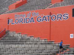 Ben Hill Griffin Stadium-Home of the Florida Gators.