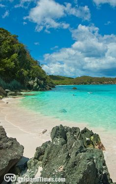 Trunk Bay Beach on beautiful Saint John, US Virgin Islands