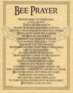 "This parchment poster offers a prayer to the spirit of the Bee, celebrating the noble spirit of this tiny, yet vital, creature and all that it has to teach us. 8 12"" x 11""."