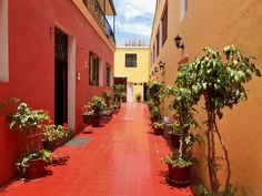 The colourful interior of Casa de Avila in Arequipa, Peru. Photo by Don Trynor. Peru Travel, Colorful Interiors, Pictures, Arequipa, Photos, Photo Illustration, Resim, Clip Art