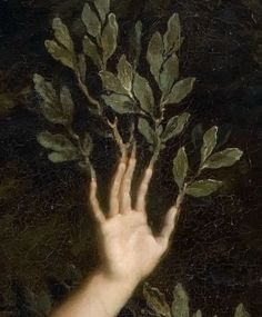 Extract from Apollo chasing Daphne, by René-Antoine Houasse, Regram … - Art Painting Aesthetic Art, Aesthetic Pictures, Aesthetic Painting, Aesthetic Outfit, Aesthetic Drawing, Aesthetic Clothes, Apollo Aesthetic, Renaissance Kunst, Renaissance Paintings