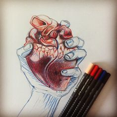 D'humeur cra-cra aujourd'hui... En cours #draw #drawing #dessin #hand #main #hands #mains #heart #coeur #anatomy #anatomie #pencil #crayon #art #color #colors #couleurs #red #rouge