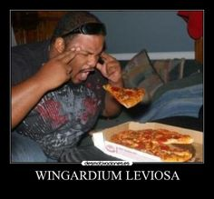 Funny Wingardium Leviosa Spell Collection. #wingardiumleviosaspell #wingardium #leviosa