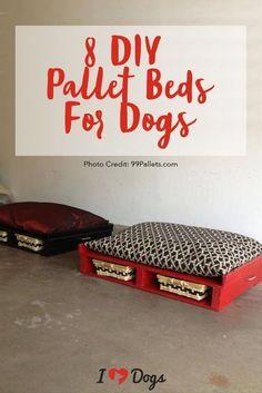dog stuff,dog ideas,dog care,dog tips,dog grooming Diy Dog Bed, Diy Bed, Dog Kennel Designs, Dog Playground, Diy Pallet Bed, Dog Rooms, Homemade Dog, Dog Photos, Pallet Projects