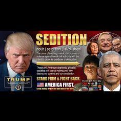 Sedition is treason