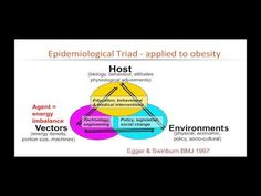 1.4b Causal models - YouTube
