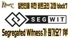 Segregated Witness가 뭔가요? 1부 | 일반인을 위한 비트코인 강좌 block6