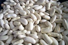zinc rich foods for vegetarian