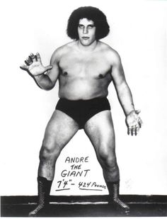 Happy BirthdayAndré René Roussimoffaka André the Giant (19 May 1946 – 27 January 1993)