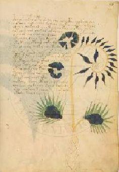 The Voynich Manuscript - Crystalinks
