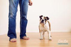 Jazz, english bulldog puppy, 4 1/2 months #englishbulldog #puppy Mans Best Friend, Best Friends, Photography Words, Bulldog Puppies, 2 Months, Jazz, Mom Jeans, English, Lifestyle