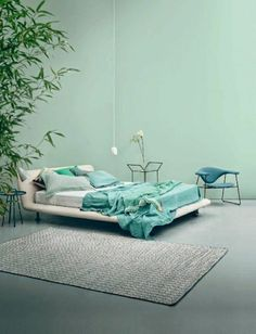 mur bleu turquoise, plantes vertes, mur vert-bleu, plante verte dans la cambre a coucher