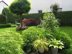 Foto Mein Schoener Garten De http mein schoener garten de jforum posts list 15 4815301 page