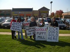 Signs for the Protest this weekend for Dreamy Puppy Of Fredericksburg, Va. Sunday, February 28th @ 1pm!!
