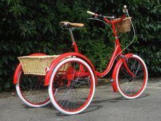 Angelina'a Trike