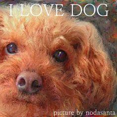 PCペイントで絵を描きました! Art picture by Seizi.N:   親バカで可愛くて、愛犬のデカい顔をお絵描きしました。  Ariana Grande - Baby I http://youtu.be/bJuWlMFToNo
