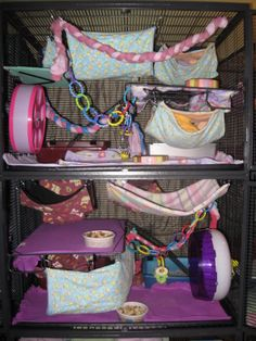 Cage Rat, Pet Rat Cages, Pet Cage, Chinchilla Cage, Beauty Land, Hamster Care, Exotic Pets, Guinea Pigs, Mammals