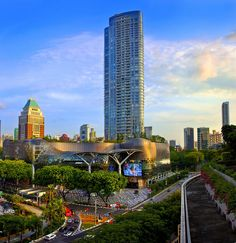 Ion Orchard spectacular picture!