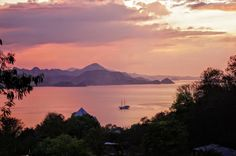 View from our hostel in Labuan Bajo, Indonesia. That is the port from which you have to leave in order to see the Komodo dragons. #dragons #komodo #labuanbajo #indonesia #rinca #islands #asia