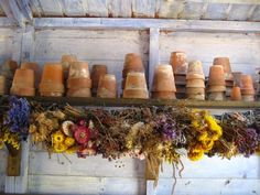 Lots of clay pots and dried flowers