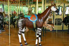 Okapi merry-go-round animal on carousel at St. Louis Zoo. St Louis, MO.