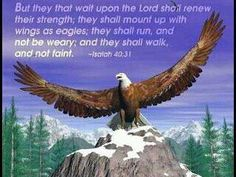 ...they shall mount up with wings as Eagles...