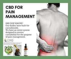 """CBD OIL For Pain CBD for Pain """"Under-diagnosed and under-treated, chronic pain amounts to an unrecognized public health crisis afflicting more than 116 million adult Americans each year and. For Your Health, Health And Wellness, Cbd Hemp Oil, Pain Management, Public Health, Chronic Pain, Back Pain, Pain Relief, How To Apply"""