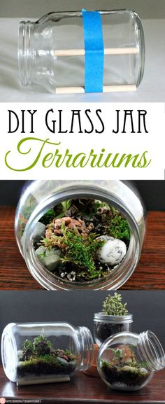 DIY Glass Jar Terrariums Such a good idea with succulents! #Succulents #Terrariums #Minature
